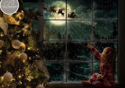 Christmas-WindowUSE4